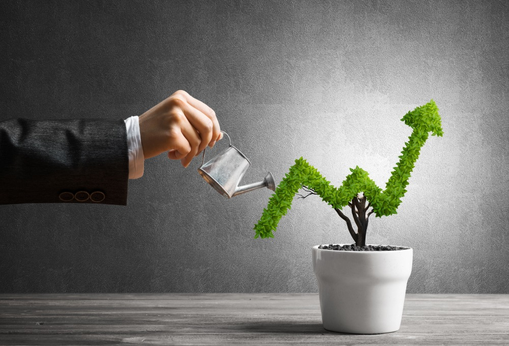 Ditch Value Stocks! Growth Stocks are Crushing it!