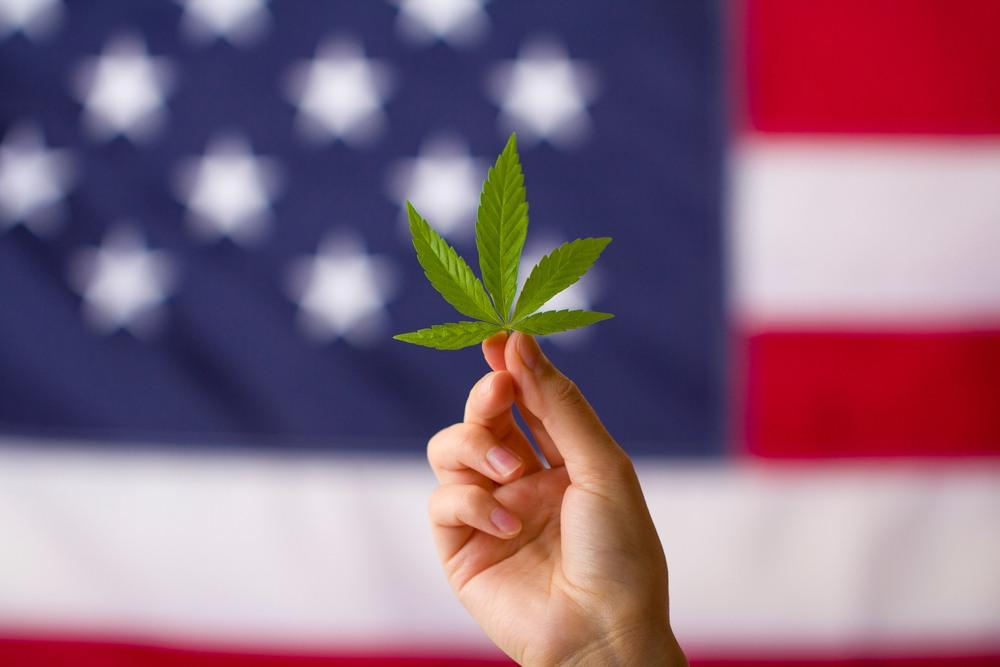 Cannabis Stocks Post-Election Rally: Buy This Pot ETF