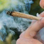 Biden Could Approve Recreational Marijuana, Get Ready Investors!