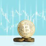 Elon Musk & Crypto + Bull Trap: Busting Market Myths